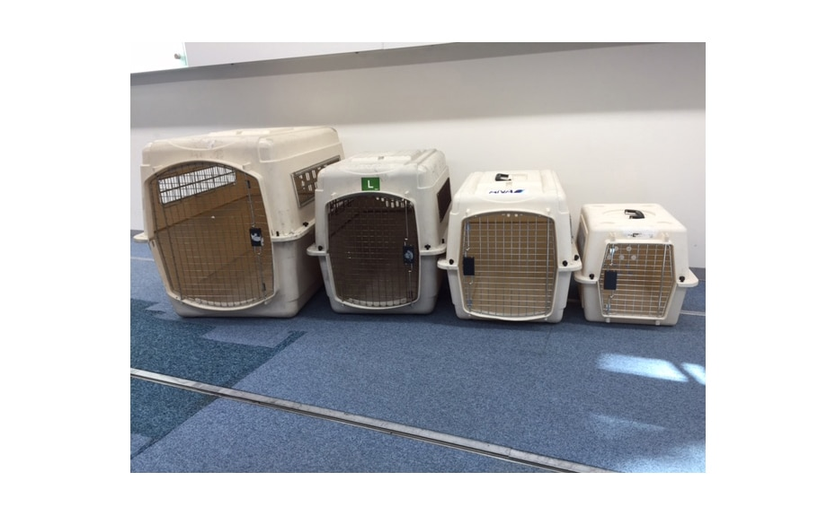 Image of pet cages in various sizes