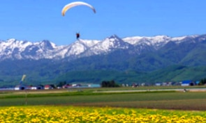 Lift Off with a Powered Paragliding Adventure in Furano