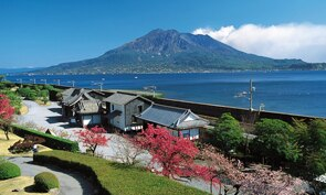 Full Day Tour of Kagoshima and Sakurajima's Best Sights