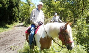 Beginner Friendly Horse Back Riding Experience in Taketa