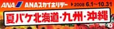 ANAの旅行サイト【ANA SKY WEB TOUR】夏バケ北海道・九州・沖縄