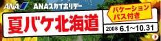 ANAの旅行サイト【ANA SKY WEB TOUR】夏バケ北海道