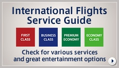 International Flights Service Guide