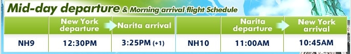 Mid-day departure & Morning arrival flight Schedule