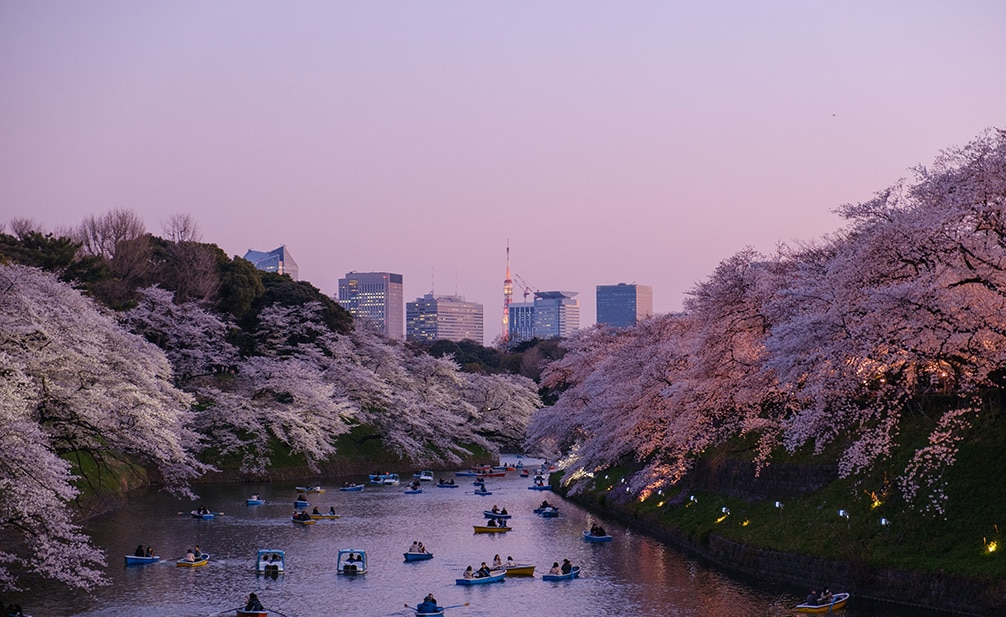 a photo of Tokyo